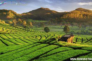 Paket Wisata Jakarta – Bandung 3 Hari 2 Malam