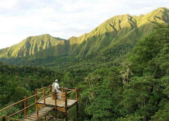 Taman Wisata Pusuk Sembalun Lombok